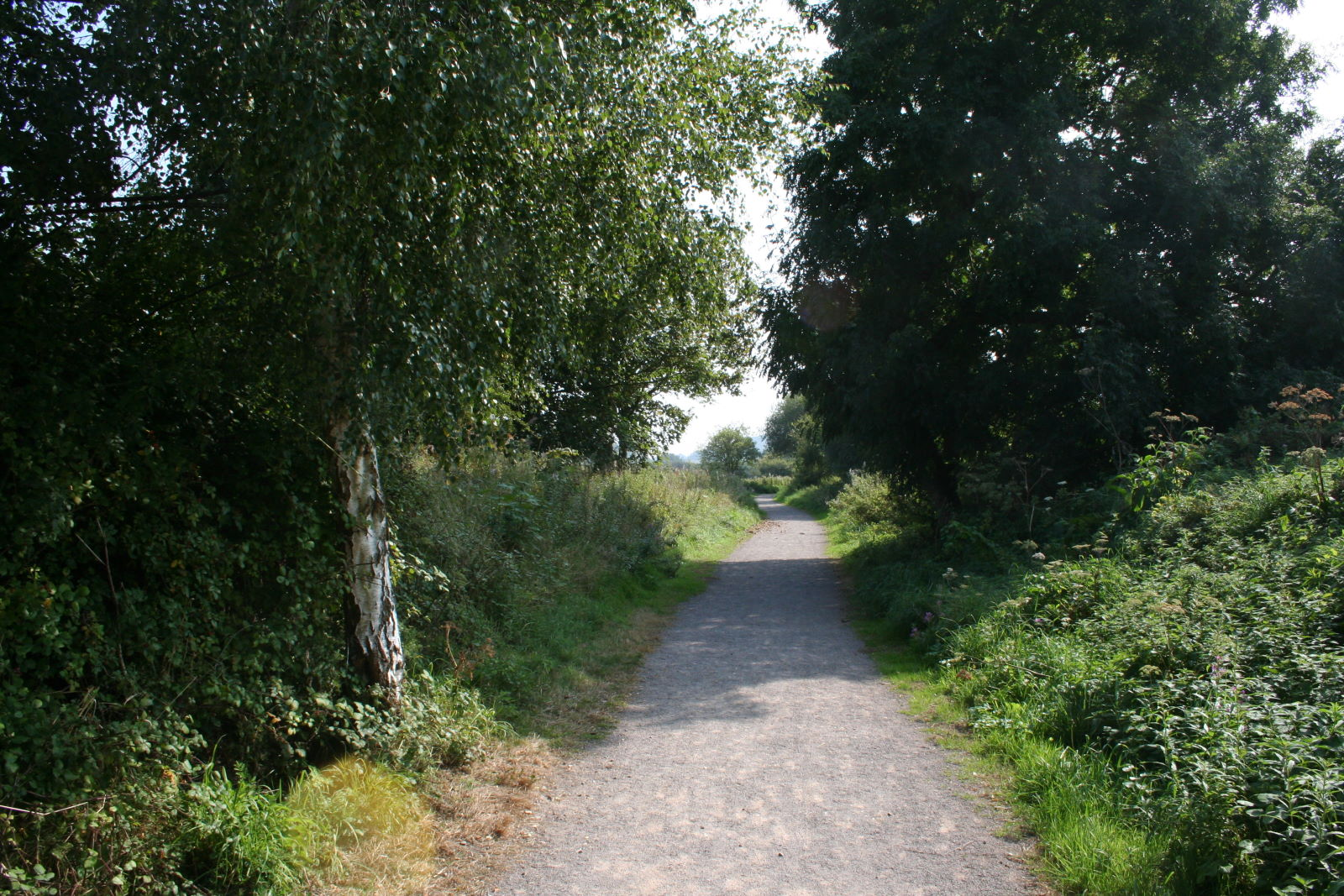 The Dorset Trailway, which follows the route of the S&D